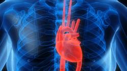 кардиомиопатии в израиле