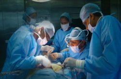 трансплантация стволовых клеток в израиле