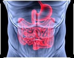 Лечение полипов кишечника